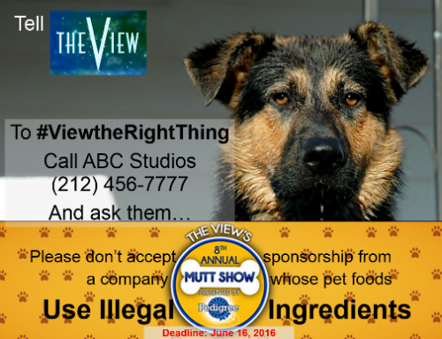 Tell The View to End Sponsorship with Illegal Pet Foods