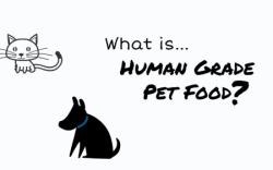 WhatisHumanGradePetFood