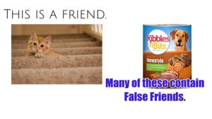 The False Friends of Pet Food Consumers