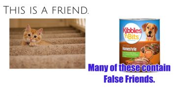 Made In The Usa Truth About Pet Food