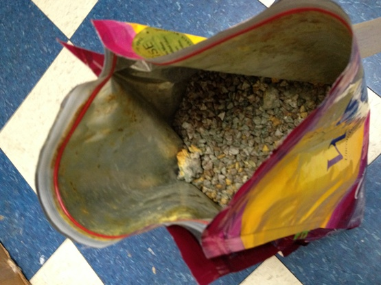 Wellness Super 5 Mix Small Breed Adult Dog Food Recall Truth About