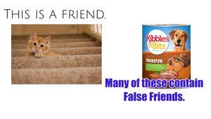 The False Friends of Pet Food Consumers
