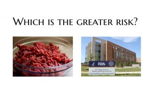 Risk assessment: Raw pet food or the Government regulating it?